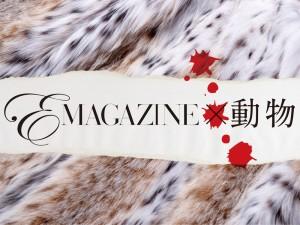 Emagazine Issue2